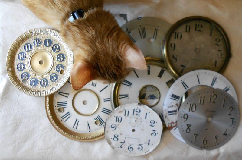 QA Clock Faces 2 (1280x850)