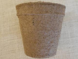 Peat pot (800x600)