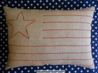 Starshine Salon Flag Pillow (2)